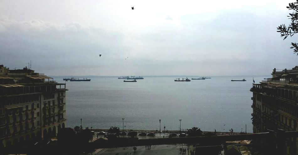 Ships On The Water Thessaloniki Port  Aristotelous Square Birds Flying View From The Window...