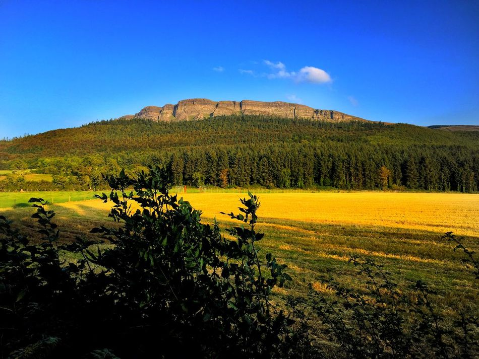 Mountain View Golden Autumn Afternoon Golden Hour Ireland Forest Creative Light And Shadow Blue Sky Nature_collection