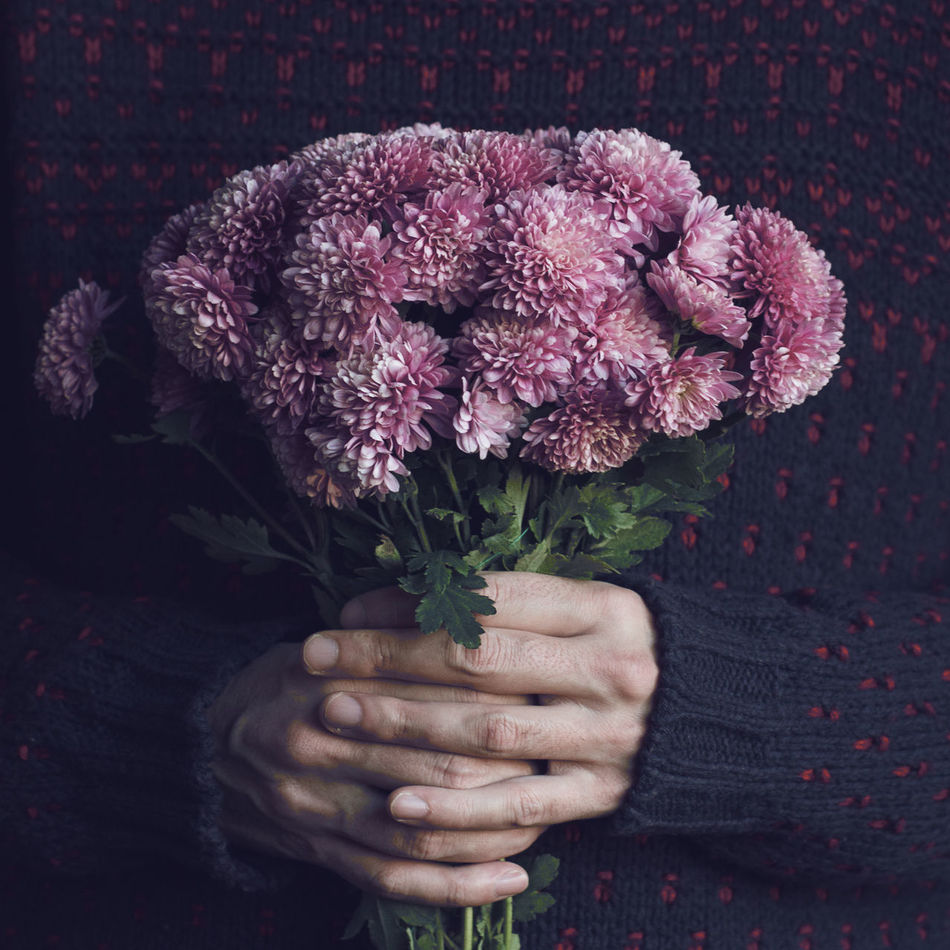 Beautiful stock photos of life,  Bouquet,  Bunch Of Flowers,  Close-Up,  Flower