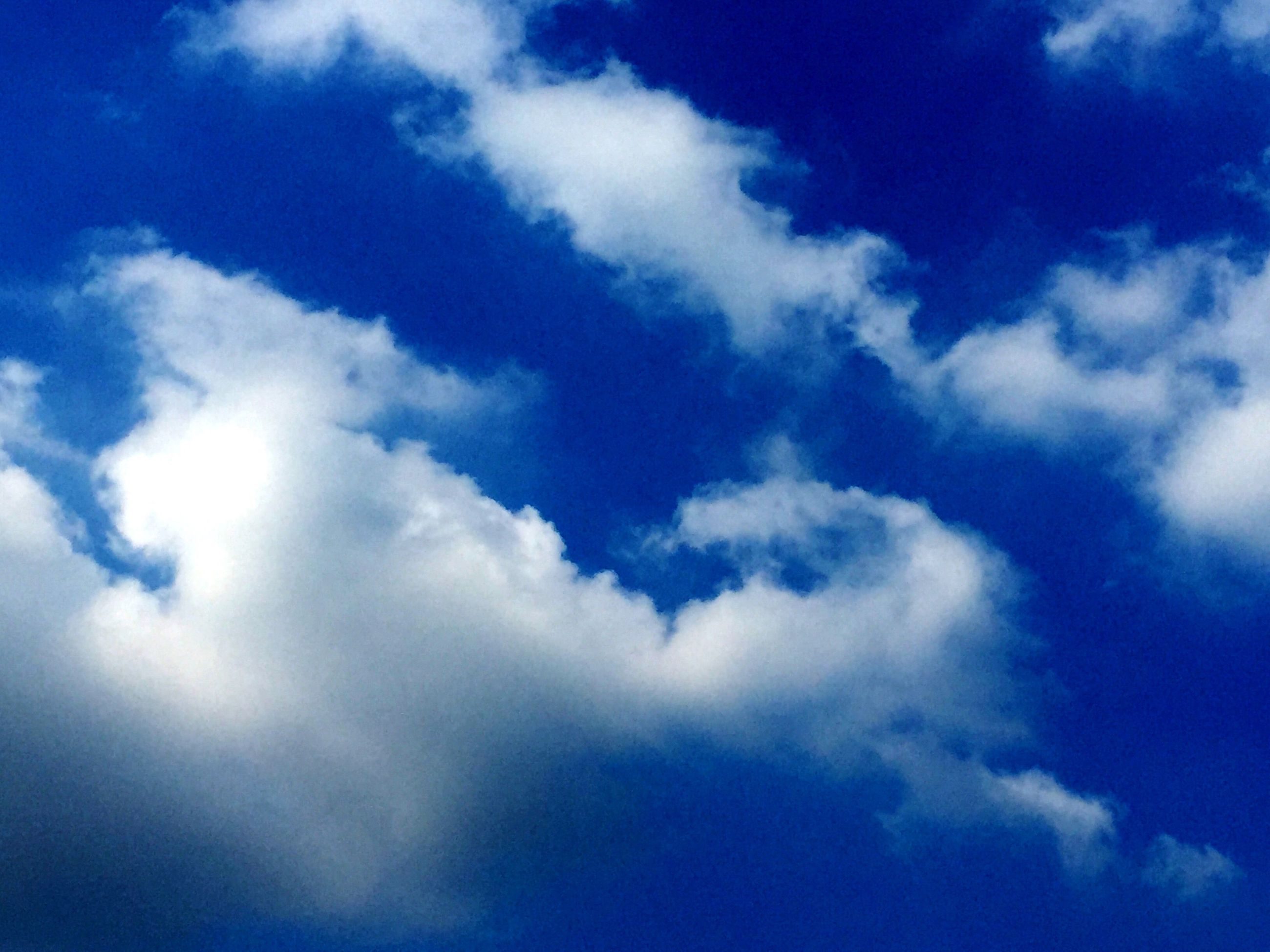 low angle view, blue, sky, sky only, cloud - sky, beauty in nature, tranquility, nature, scenics, tranquil scene, cloudscape, cloud, backgrounds, cloudy, idyllic, day, outdoors, full frame, no people, majestic, white, softness