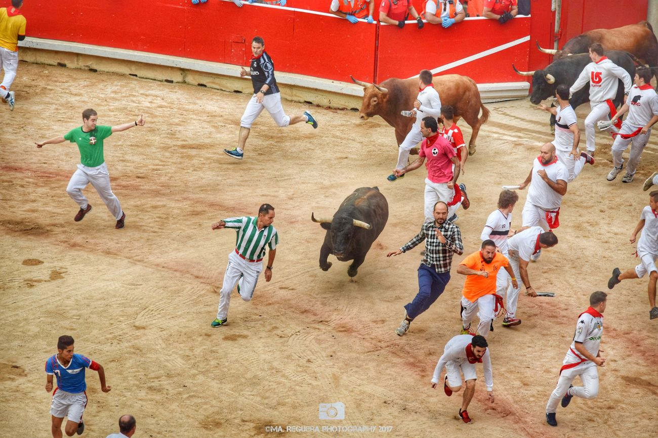 Bull runners Party San Fermin Pamplona Navarra SPAIN Bullring Bullfighting Animal Bull Runner Group Of People Peolpe Sand Fear Courage Value Outdoors Adult Action Pamplona City Sf2017