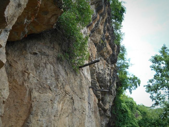 Cliff : Part of Mountain, Rock, Trees are growing on the rocks, Low Angel Views, Getting In Spired. Taking photos.
