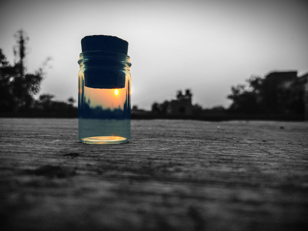 jar, no people, bottle, selective focus, table, close-up, indoors, nature, research, tree, day, sky