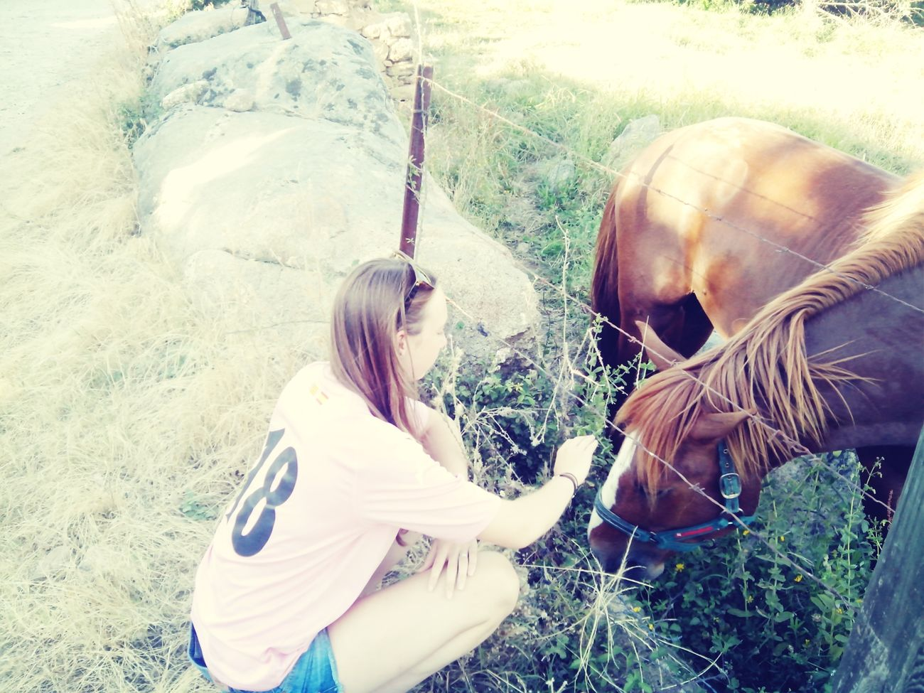 Thats Me ♥ Hello ❤ I Love Horses