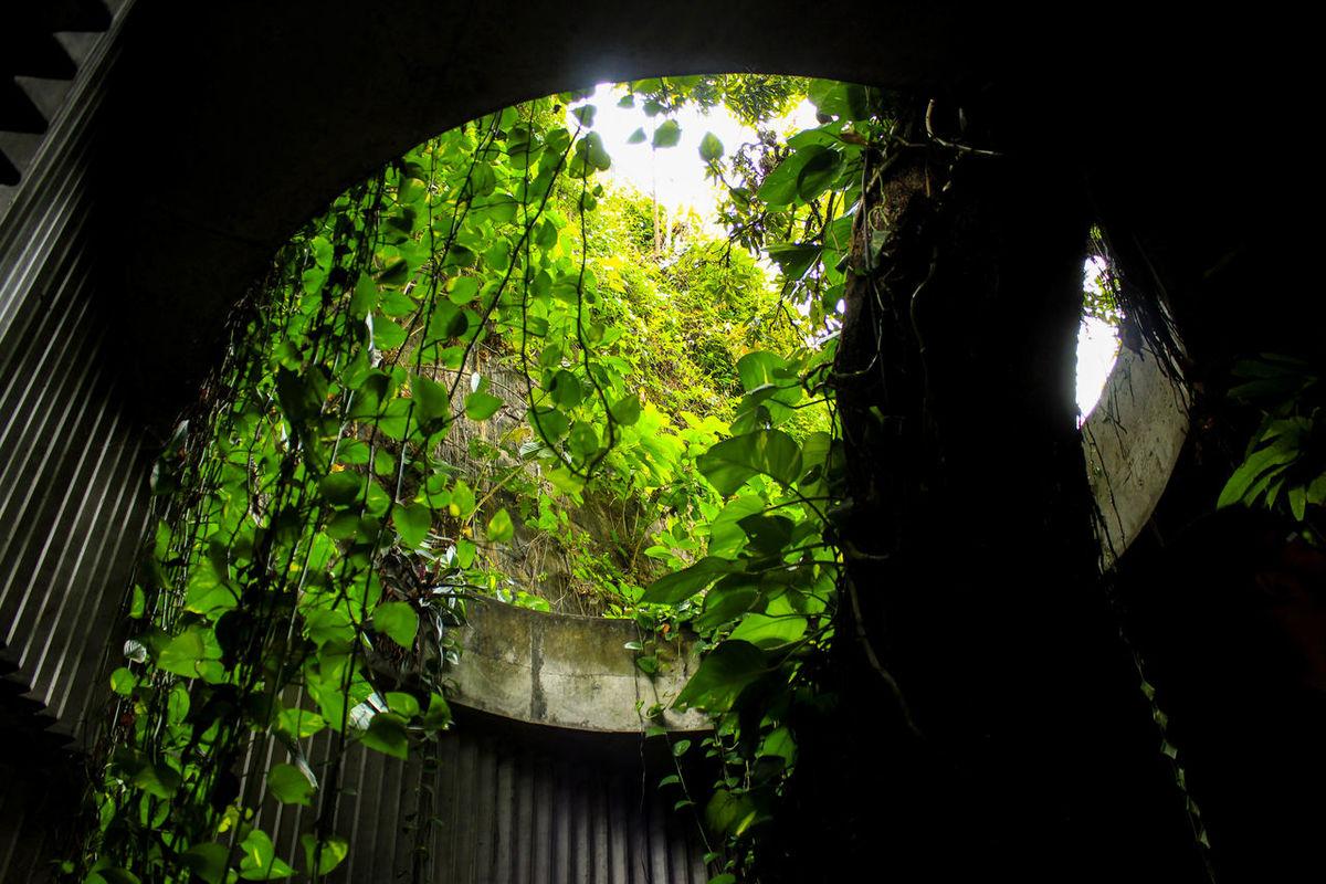 Architecture Bahia Brazil Concrete Green Green Nature Light And Shadow Lina Bo Bardi Nature Salvador Sunlight The Architect - 2017 EyeEm Awards