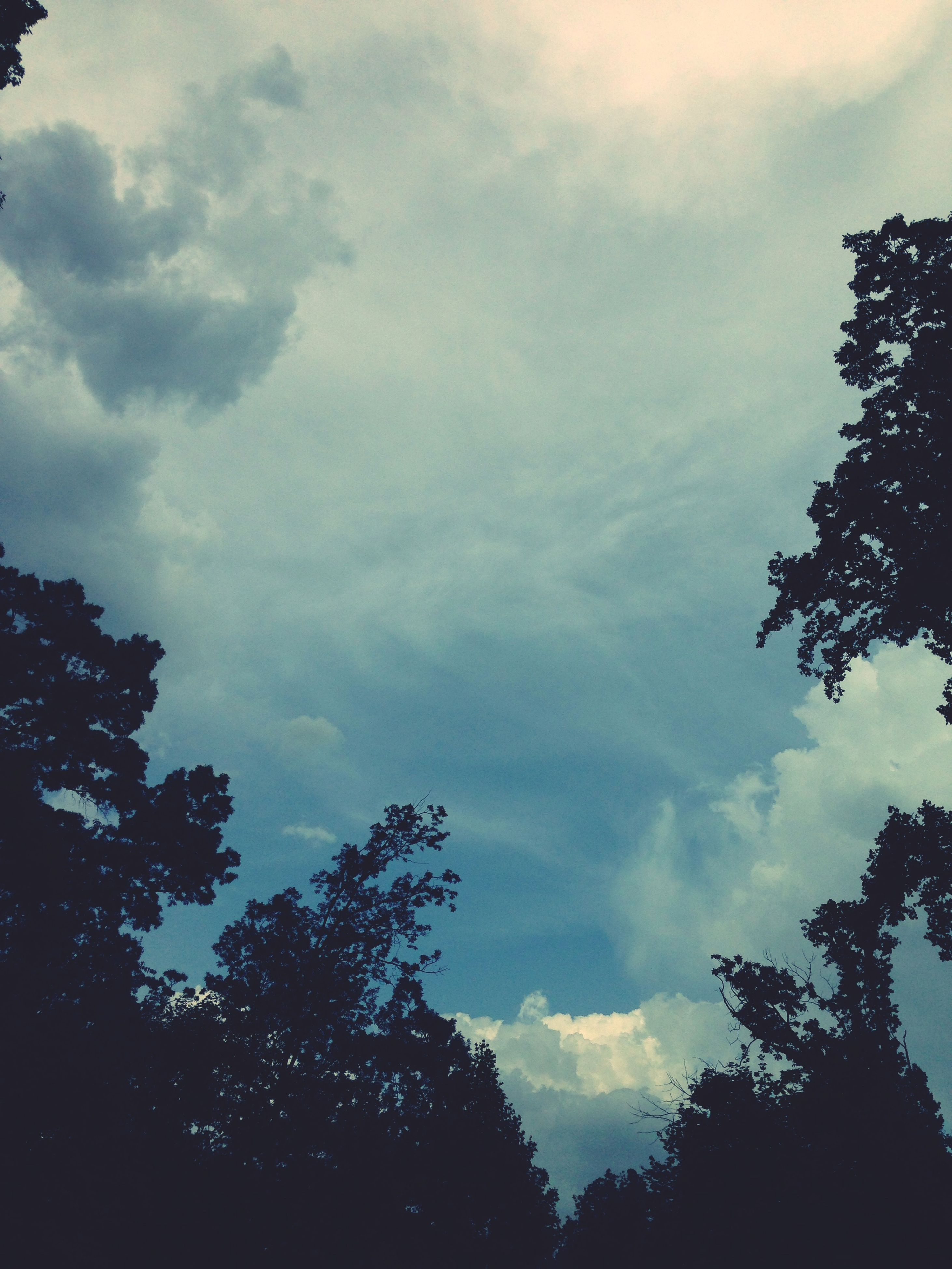 sky, low angle view, cloud - sky, tree, tranquility, cloudy, silhouette, beauty in nature, nature, tranquil scene, scenics, cloud, branch, outdoors, idyllic, no people, weather, dusk, growth, day