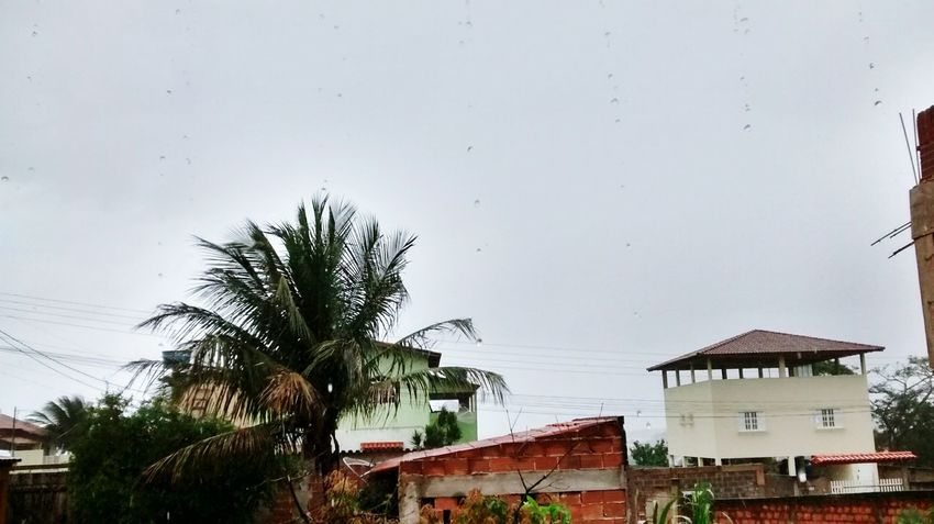 Cityscapes Wheater Roof Coconut House Guarapari