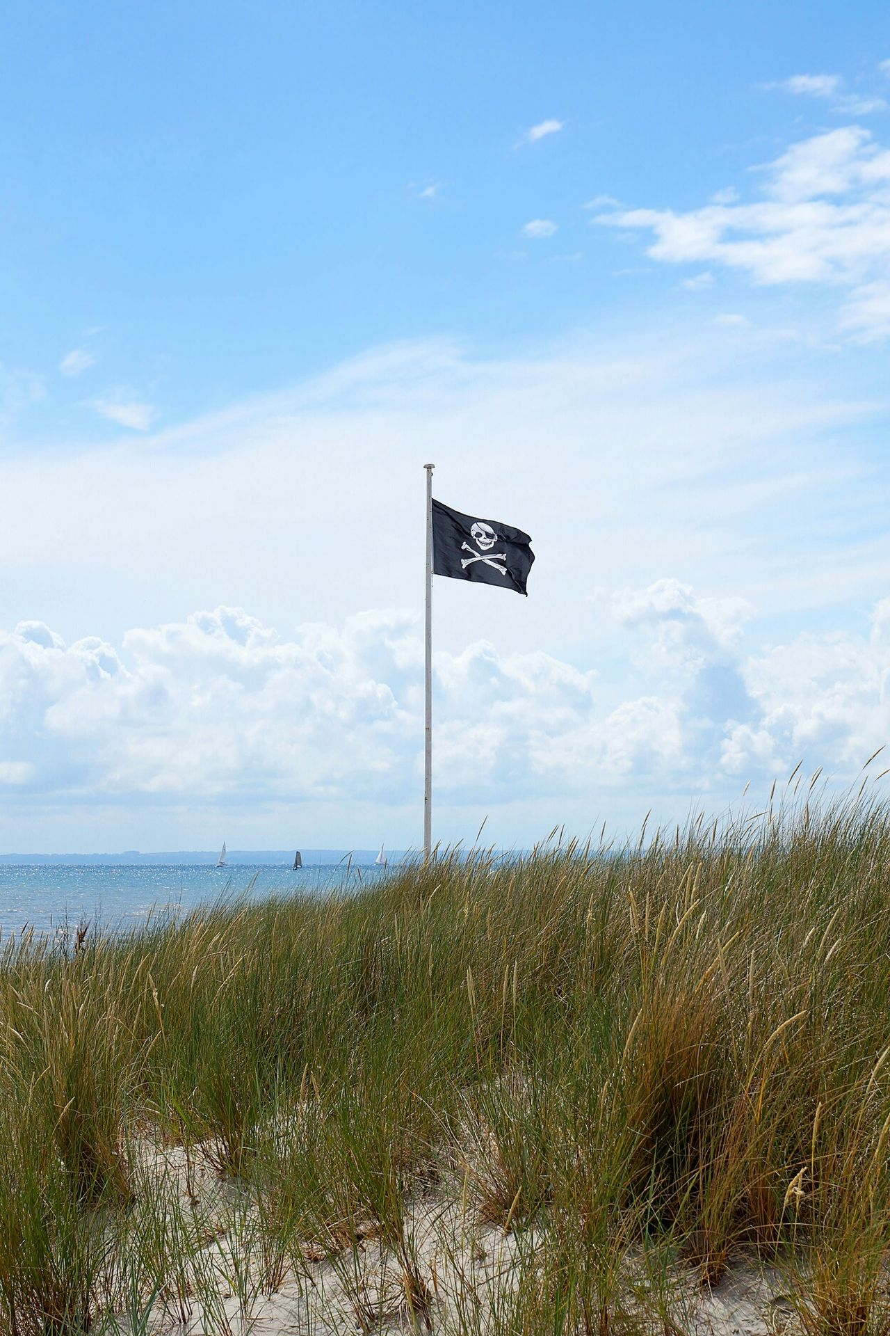 Pirate Flag Beach Dunes