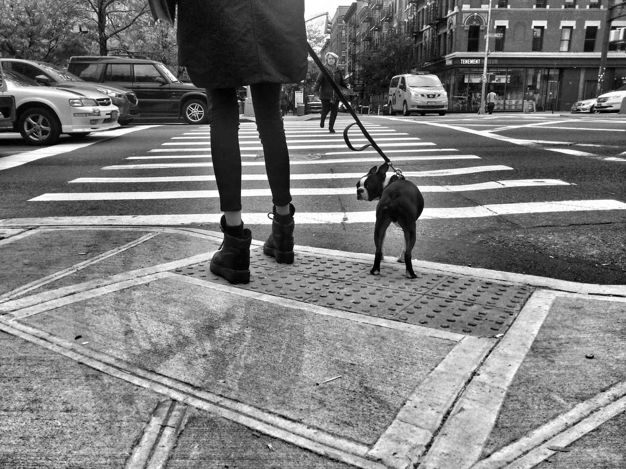 The girl with the dog. Soho NYC Streetphotography Monochrome Blackandwhite NYC Dogs Dog People Everyday Lives B&W Portrait EyeEm Best Shots Telling Stories Differently Up Close Street Photography My Favorite Photo Monochrome Photography Snap a Stranger Enjoy The New Normal Embrace Urban Life Exploring Style The Street Photographer - 2017 EyeEm Awards The Portraitist - 2017 EyeEm Awards