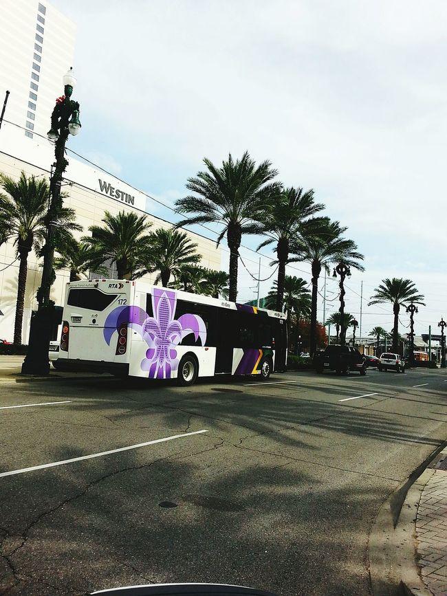 City Bus New Orleans ❤✔. New Orleans SAINTS