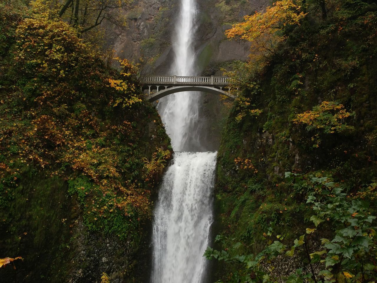 Nature Water Beauty In Nature Waterfall Outdoors Day Portland Portland, OR Multnomah Falls  Taking Photos