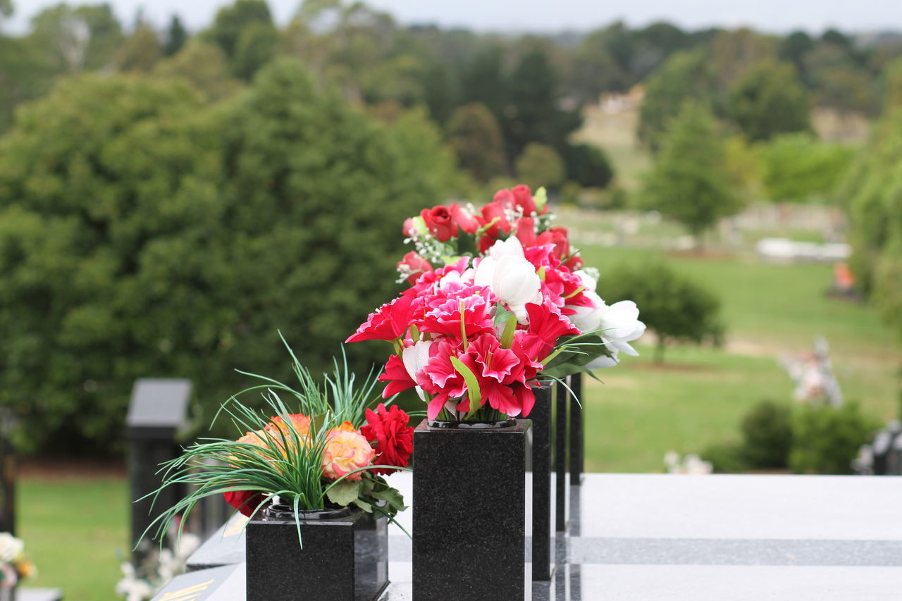 Cementery Photography Colours Of Nature Daytime Photography Nature On Your Doorstep Tranquil Moments Vases Aligned