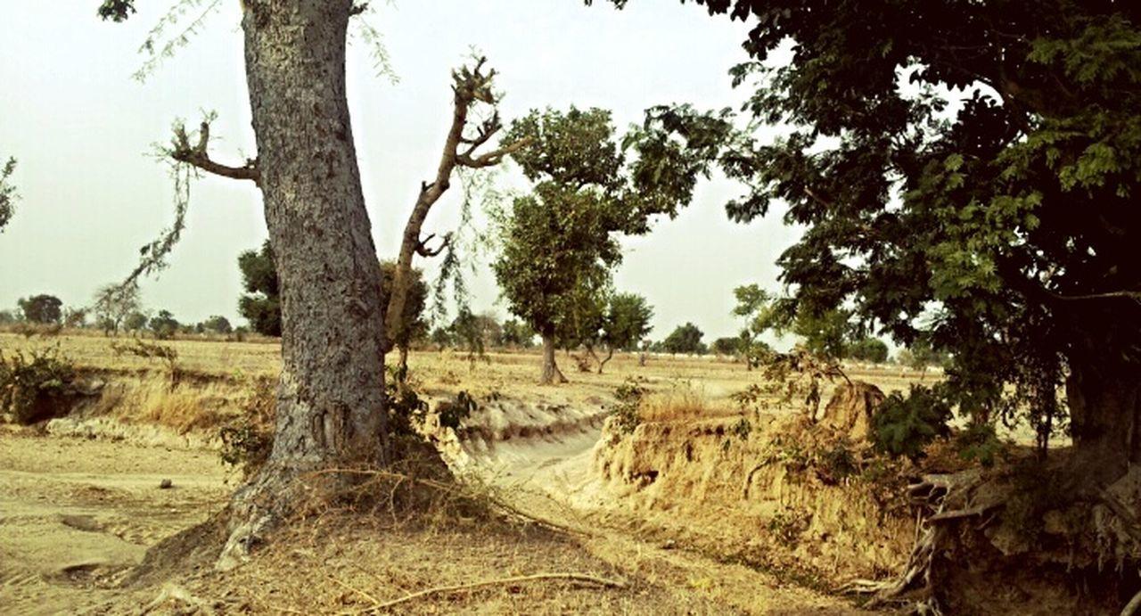 Hdwallpaperporn Subsahara Eye Em Landscape-Collection Eye Em Nature Lover