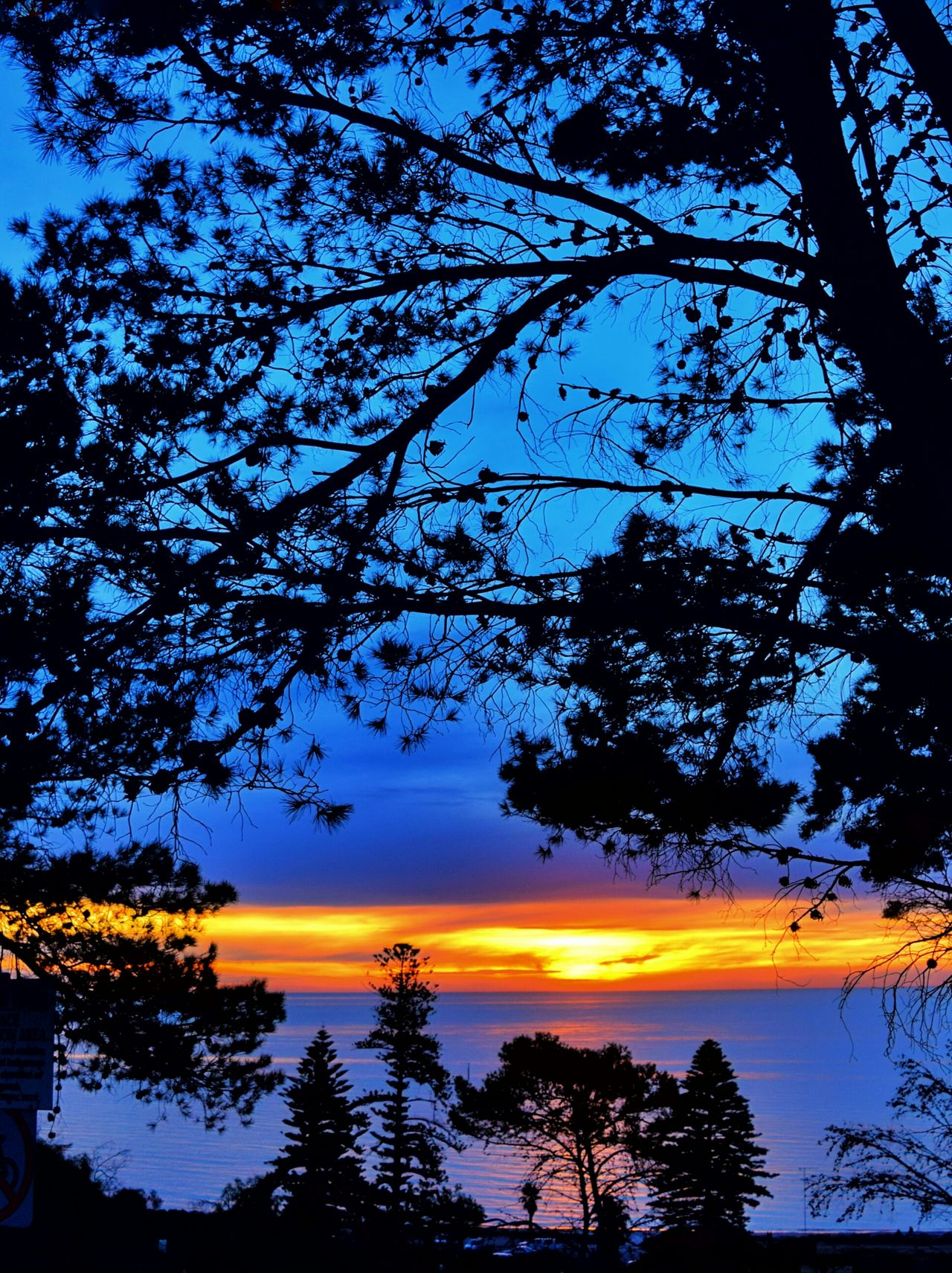 Seacliff South Australia Taking Photos Check This Out Hanging Out Relaxing Hi! Enjoying Life Sunset✨trees✨ Nature Photography Sunsetporn Nature_collection Silouette & Sky Silhouettes Collection Sunset And Clouds  Sunset_collection Clouds And Sky Photos Of Arround You The Great Outdoors - 2015 Eyeem Awards Sunset_collection Sunset Silhouettes. Sunset #sun #clouds #skylovers #sky #nature #beautifulinnature #naturalbeauty Photography Landscape [ Sunset_collection Sunset_captures Sunset #sun #clouds #skylovers #sky #nature #beautifulinnature #naturalbeauty #photography #landscape Sunset #sun #clouds #skylovers #skyporn #sky #beautiful #sunset #clouds And Sky #beach #sun _collection #sunst And Clouds Nature_perfection Nature On Your Doorstep Eye4photography  EyeEm Nature Lover Silhouette_collection