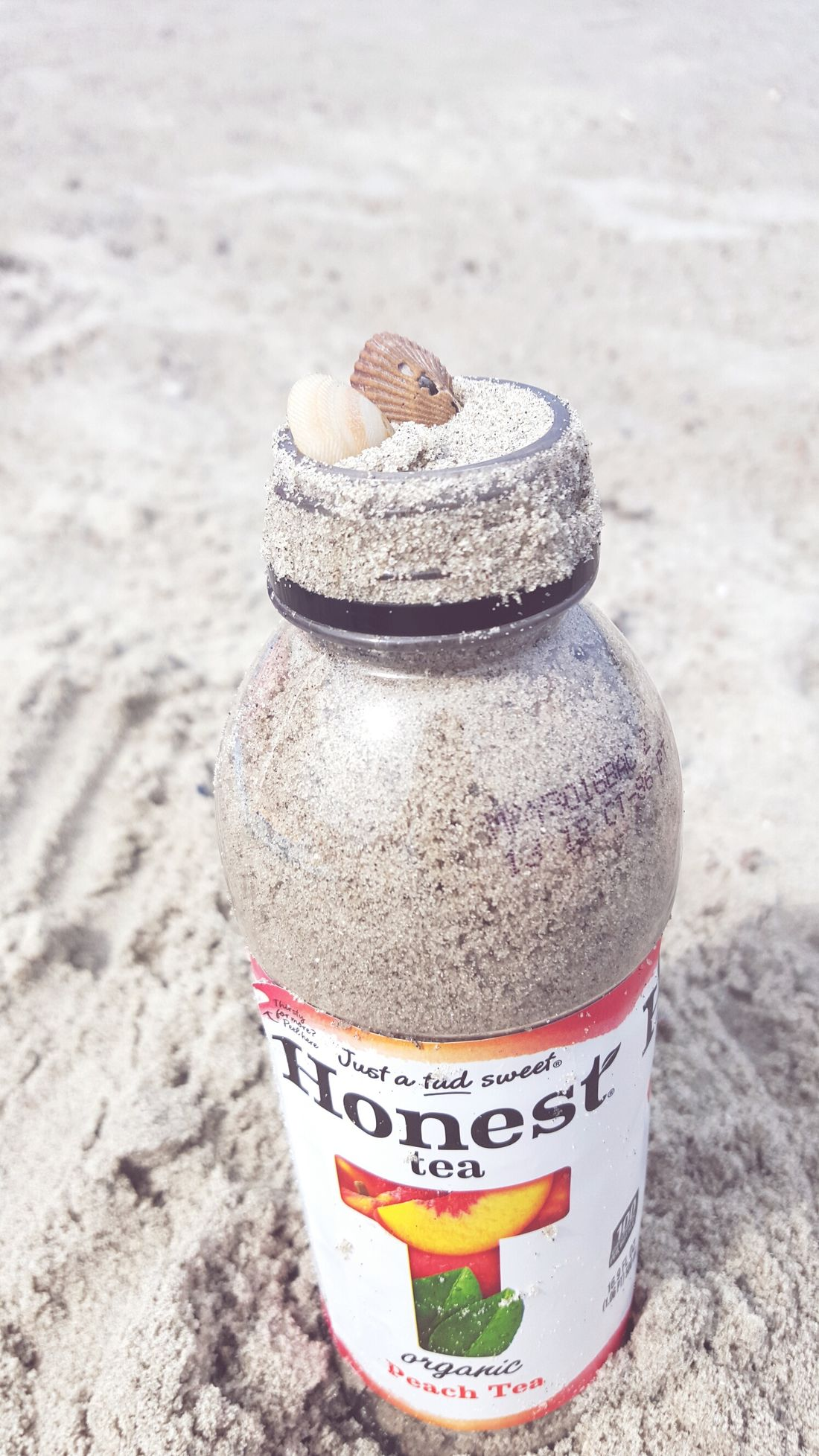 Honest Tea Beach Sand Seashells