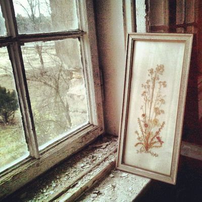 Picture looking out of the window. Enjoying the view. #urbex #lostinplace #window #picture Dark Beautifuldecay Urbex Organisedgrime Photooftheday Instaart Partnersingrime Filthyfeeds Grime Urbanexploration Findingbeautyoutofshit Light Lostplaces Picture Filthyfamily Abandoned Urbanex Derelict Sfx_urbex Window Lostplace Color Detailsofdecay Decay Beautymess Rotten Lostinplace