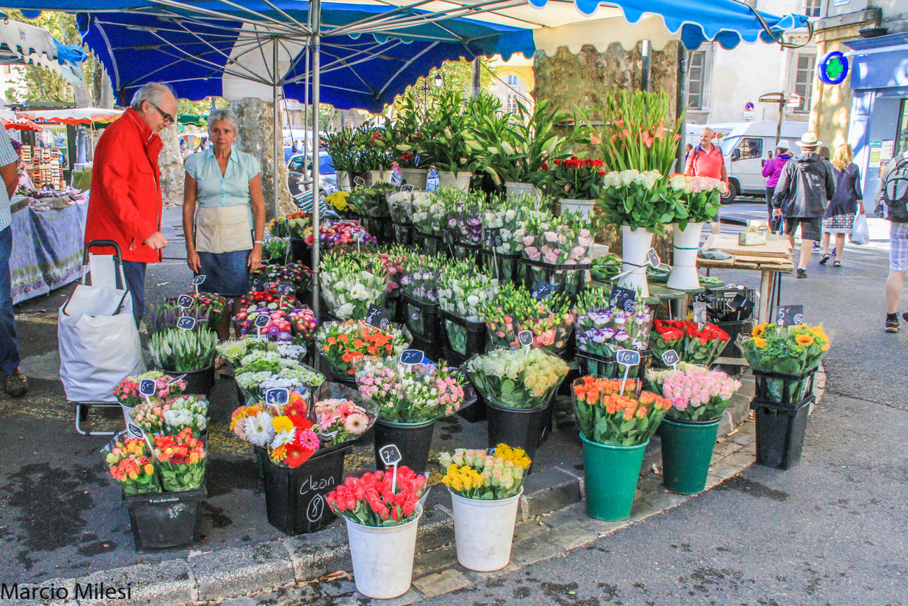 #beautifulplace #colors #flowers #market #perfume Choosing Customer  For Sale Freshness Healthy Eating Lifestyles Market Stall Selling Small Business Store Street Market Vegetable