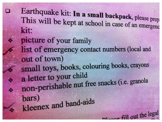 earthquake kit at Delamont Park by Kharis O'Connell