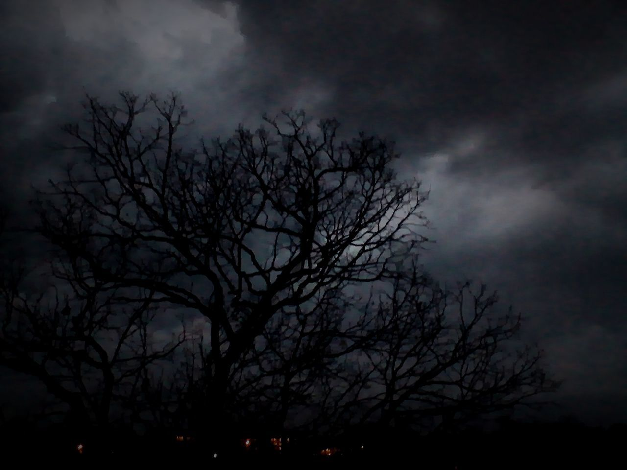 tree, sky, night, silhouette, nature, bare tree, beauty in nature, moon, dark, cloud - sky, scenics, outdoors, tranquility, dusk, branch, no people, tranquil scene, low angle view, storm cloud, landscape, moonlight, sunset, astronomy