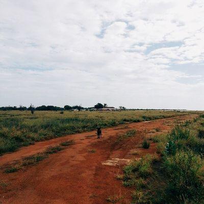 Fido nos abandona! Al final el guía decide dejarnos vivir la aventura por nuestra cuenta. Seguimos caminando..! Macanao IslaDeMargarita Venezuela Vscocam Adventureseries January