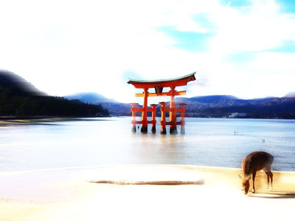 """Introducing Culture Of Japan Which Must Be Left To The Future……  """"未来に残す日本の文化"""" This Is Where I Live..."""