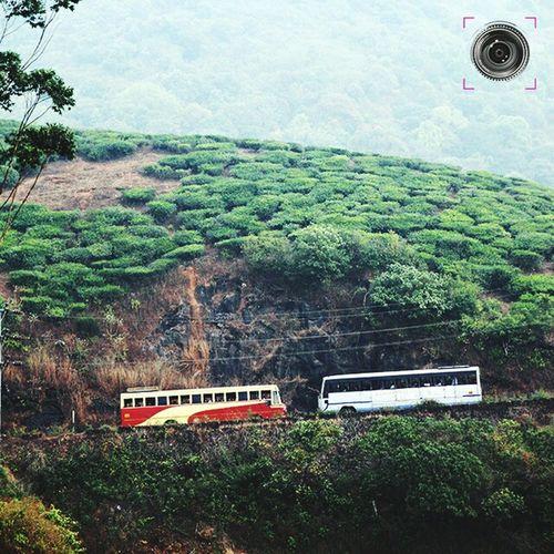 Kerala Travel Wanderlust Vagamon Mountain Range Hanging Out Bus Ksrtc Teaestate