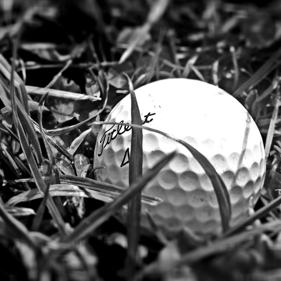 Golfing Golf My Balls. My balls lol