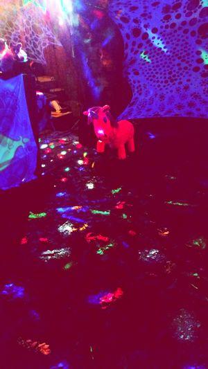 Trippyart Psychedelicart Partydecorations Unicorn Festival