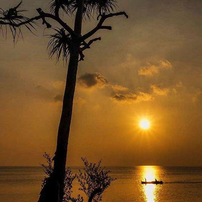 Sail before sunset Sunset Sail Boat Selayar Southsulawesi INDONESIA BeautifulIndonesia Wonderfulindonesia 1000kata Natgeotravel Asiangeographic Instalike Instagram Instagood Photooftheday