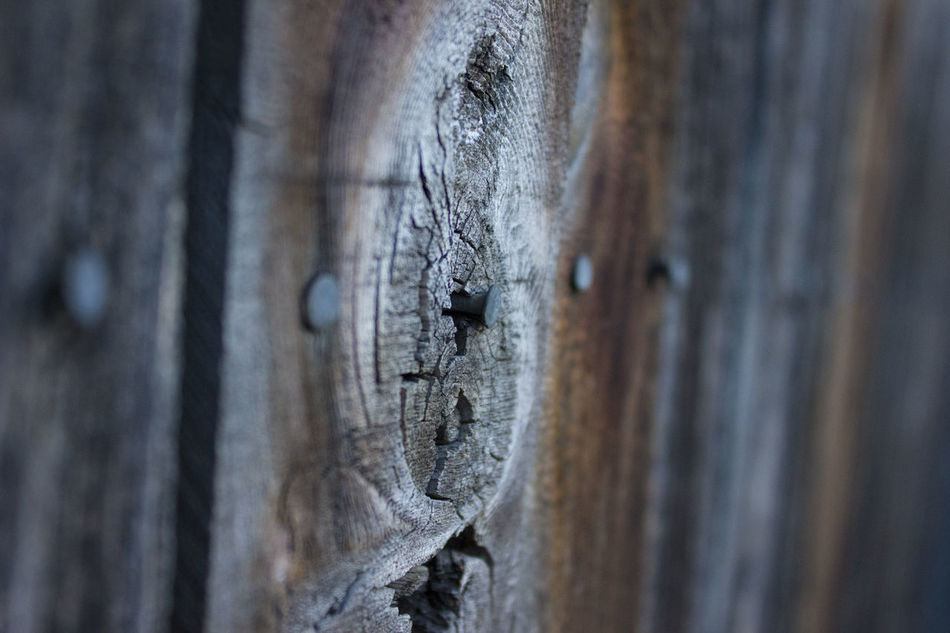 Full Frame Close-up Wooden Fence Multi Colored Denvertography