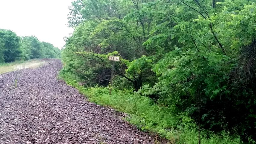 Abandoned Railway Abandoned Railway Nature Taking Over Again Nature Takes It Back Glaxays5 Little Town Kansasoutdoors Kansasphotographer Kansas Taking Photos Hanging Out Enjoying Life Small Town Outdoors Industrial Transportation Railroad Track Railroad Ties The Essence Of Summer