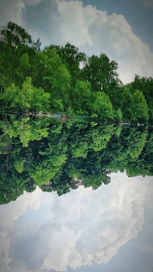 Nature's reflections are everywhere. It can turn your world upside down. Much like this image.. ☺ ⬆⬇🔽🔼 No Edits No FiltersThe Week Of Eyeem Mothernature Lake Living Lake Life My Photography Lake Reflection Reflectionmy photography Reflections Reflection Perfection  Waterscape Photography Lakelife Reflecting Water Natural Reflection In The Water Reflection_collection Taking Photos