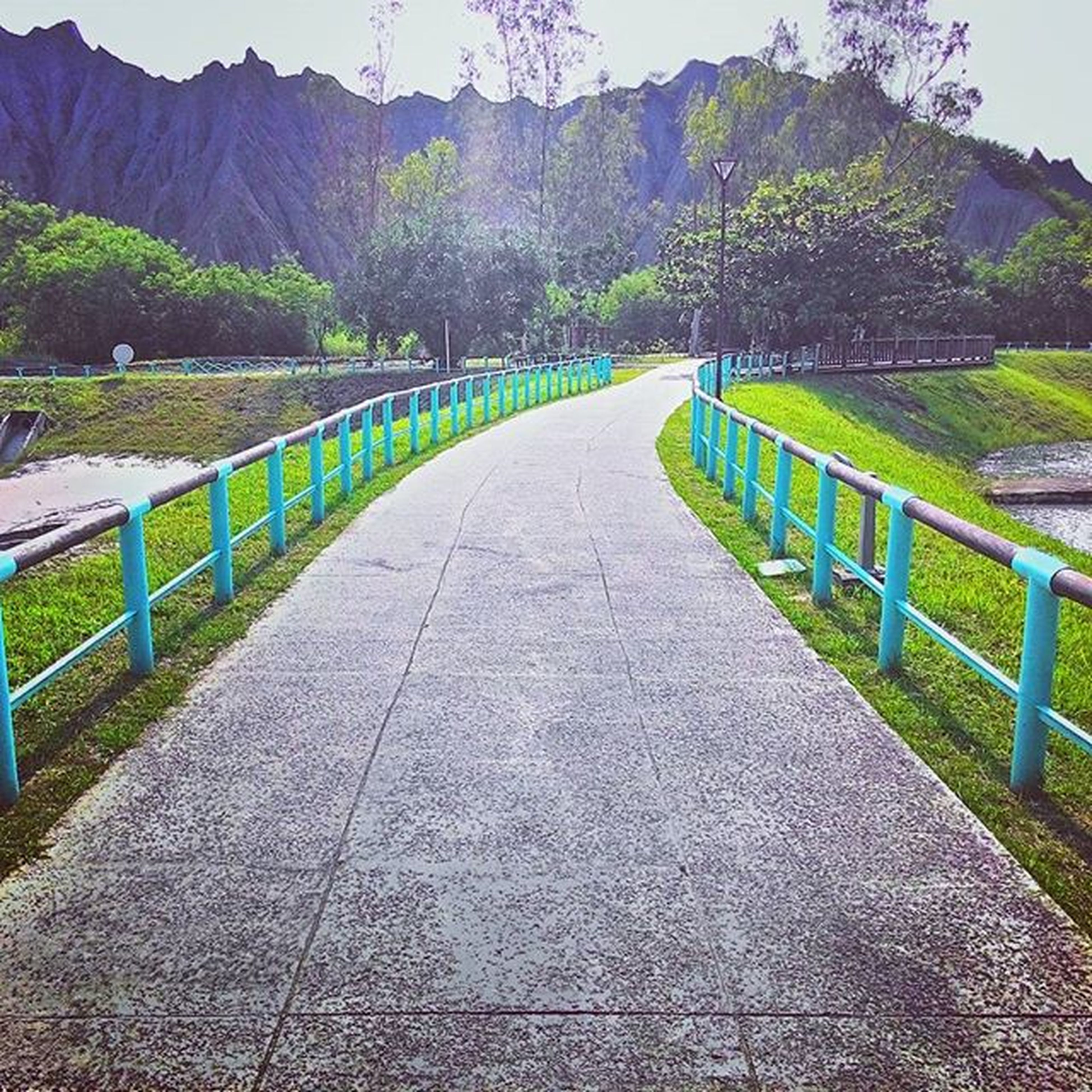the way forward, mountain, tranquility, tranquil scene, tree, scenics, landscape, diminishing perspective, beauty in nature, nature, railing, road, vanishing point, grass, footpath, mountain range, green color, sky, non-urban scene, idyllic