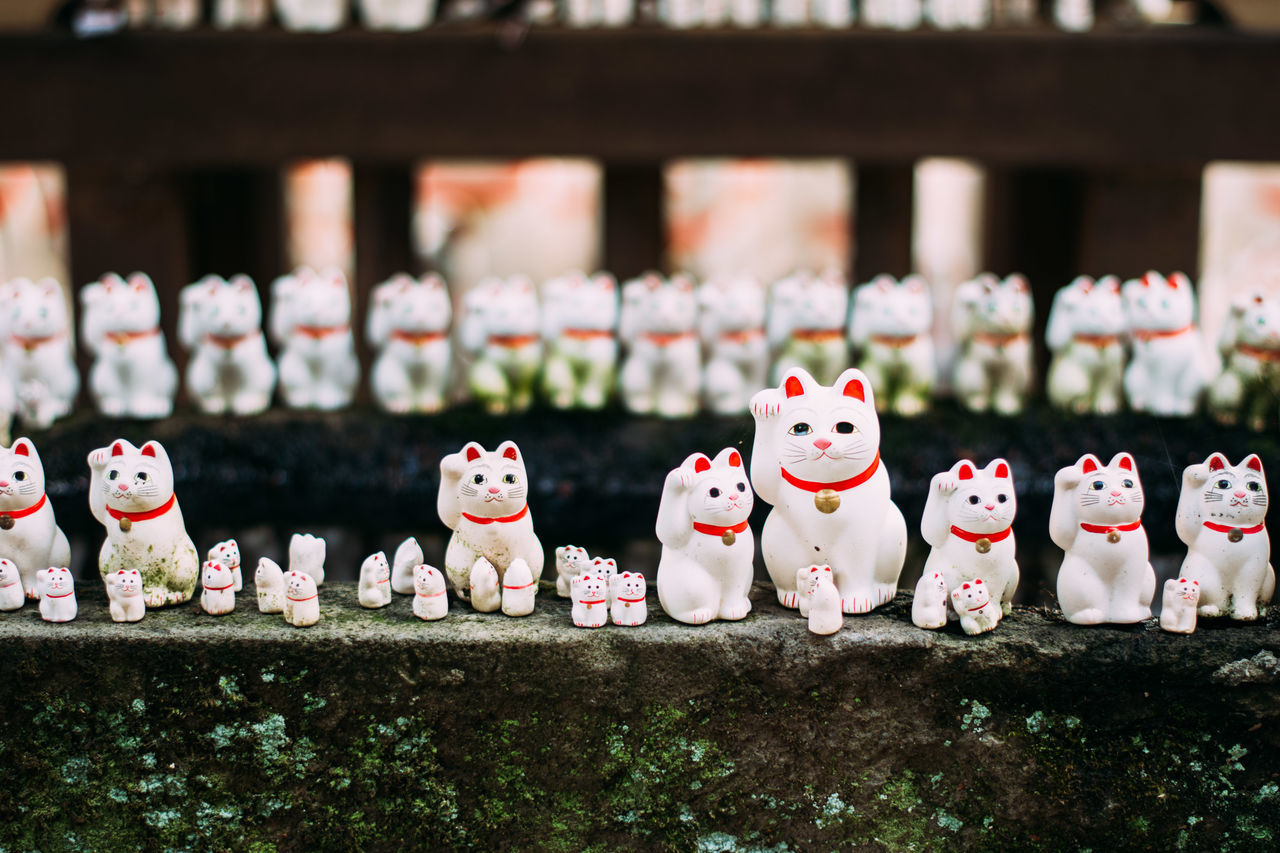 "Gotokuji, the ""cat temple"" in Tokyo. Cat Cat Temple, Doll Gotokuji J Japan Lucky Cat Manekineko Place Of Worship Quirky Religion Religious  Temple Worship"