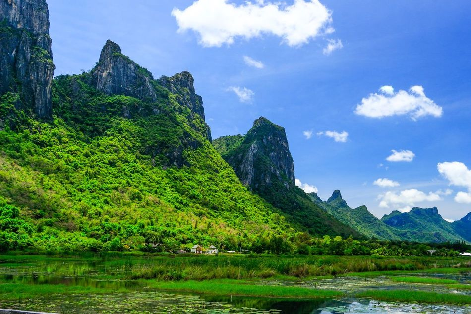 Mountain in thailand Backgrounds Beauty In Nature Blue Sky Fresh Green Area Lanscape Lanscape Photography Mountain Mountain Landscape Nature Nature Nature Backgrounds Nature Landscape Outdoors See Sky Sky Summer Thailand Thailand Mountain Travel Travel Photography