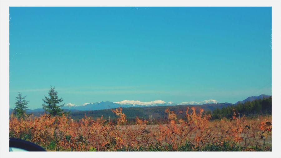 大雪山 冠雪 秋