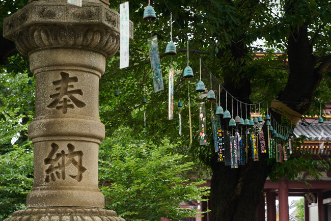 Built Structure Culture Design Green Color Japan Photography Japanese Culture Japanese Style No People Outdoors Tree Wind Chimes