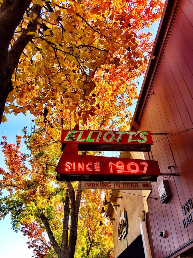 """""""Elliott's"""" An historic bar (circa 1907) neon sign, framed by spectacular yellow Autumn color, beckons entry for a hot toddy on a crisp Fall afternoon along Main Street in Danville, California, USA. Neon Sign Historical Building Historical Place Urbanexploration Autumn Autumn Colors Autumn Leaves Autumn🍁🍁🍁 Autumn Collection Colors Of Autumn Autumn 2015 Fall Beauty Fall Colors"""