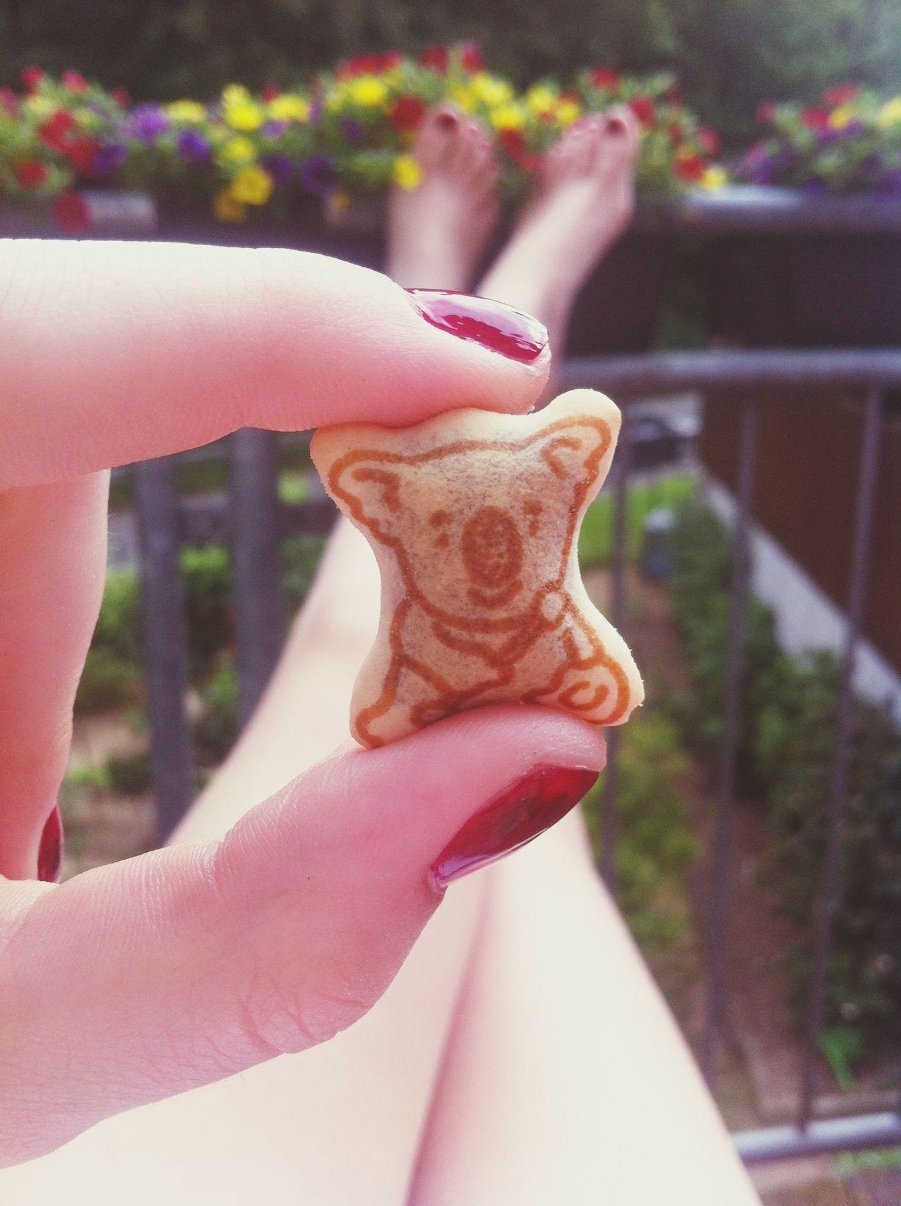 Schokolade Koala Childhood Memories ❤️