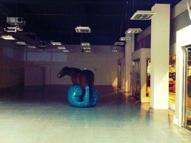 Horse on a balloon at Queen of Hoxton Horse On A Balloon