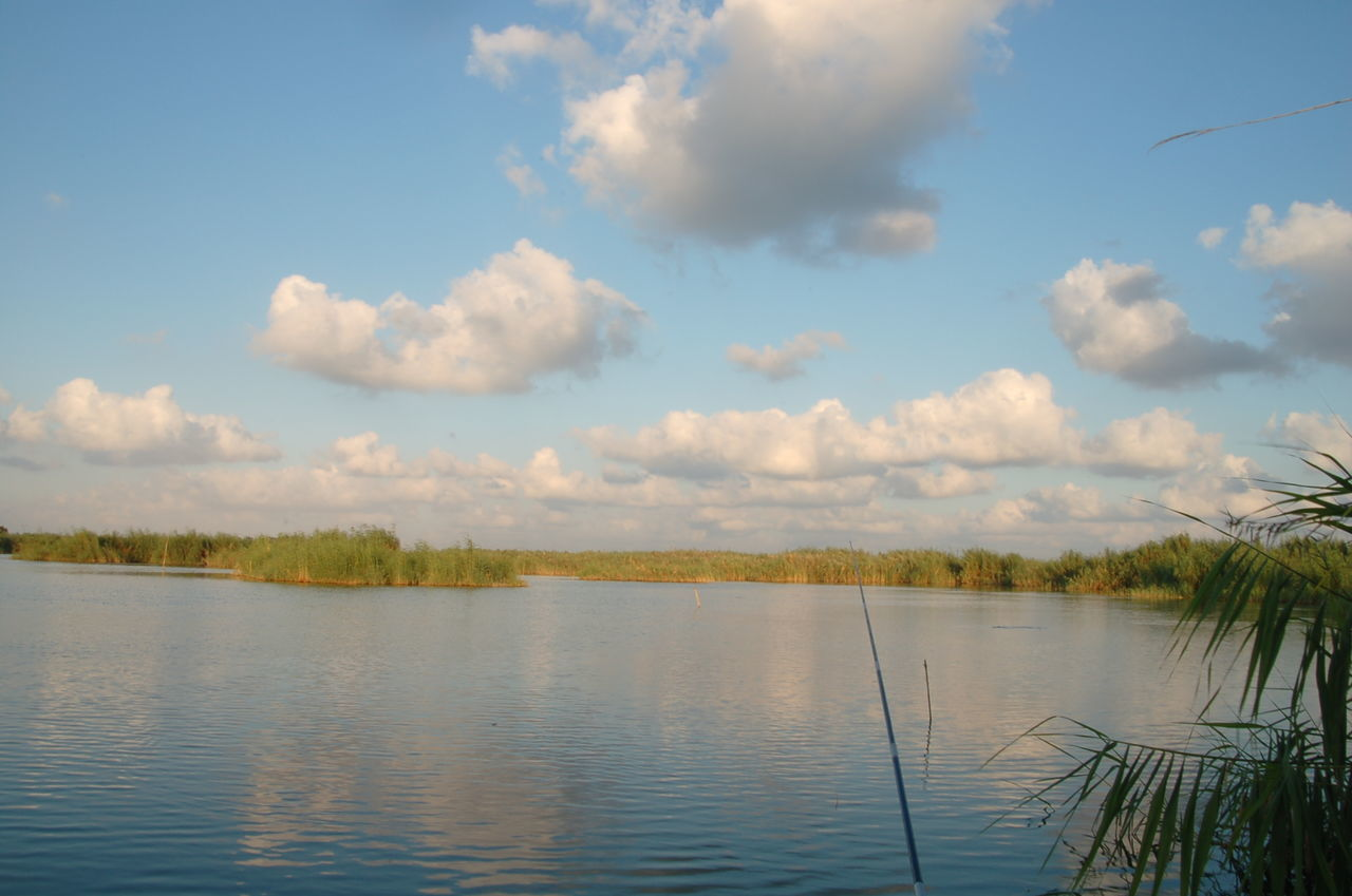 Alexandria Egypt Beauty In Nature Cloud - Sky Day Lake Landscape Nature Nature Reserve No People Outdoors Scenics Sky Tree Water Wetland