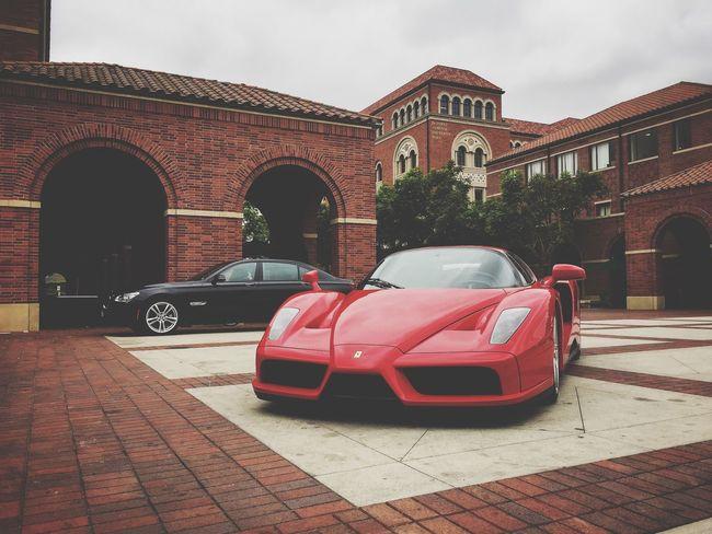 "$3 Million dollar ""Ferrari Enzo"" Ferrari Ferrari World Cars Luxurylifestyle  Luxury FerrariEnzo Imthe1will Colors Red Iphone6"
