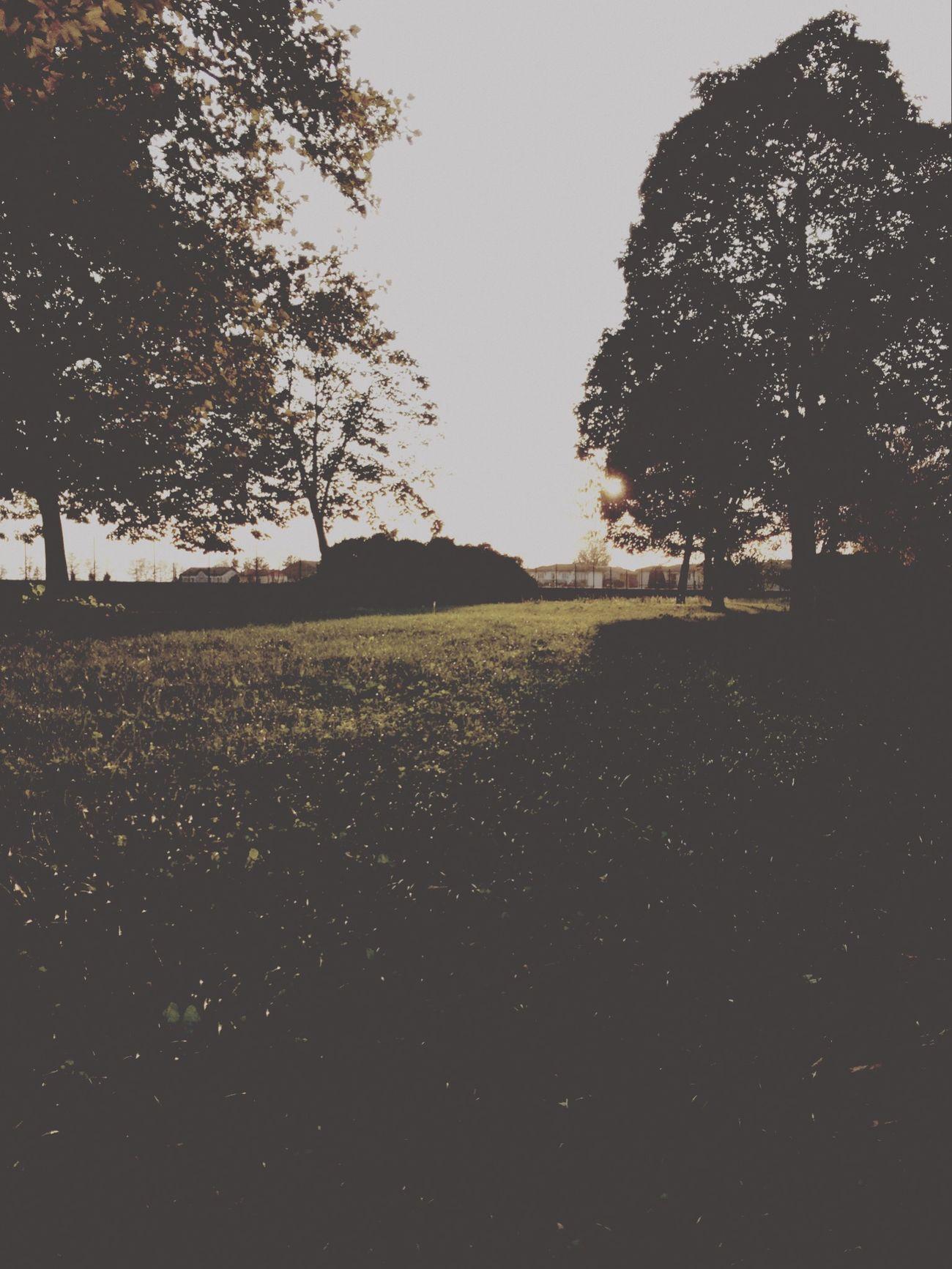 sunrise sunrise ?☀️ First Eyeem Photo