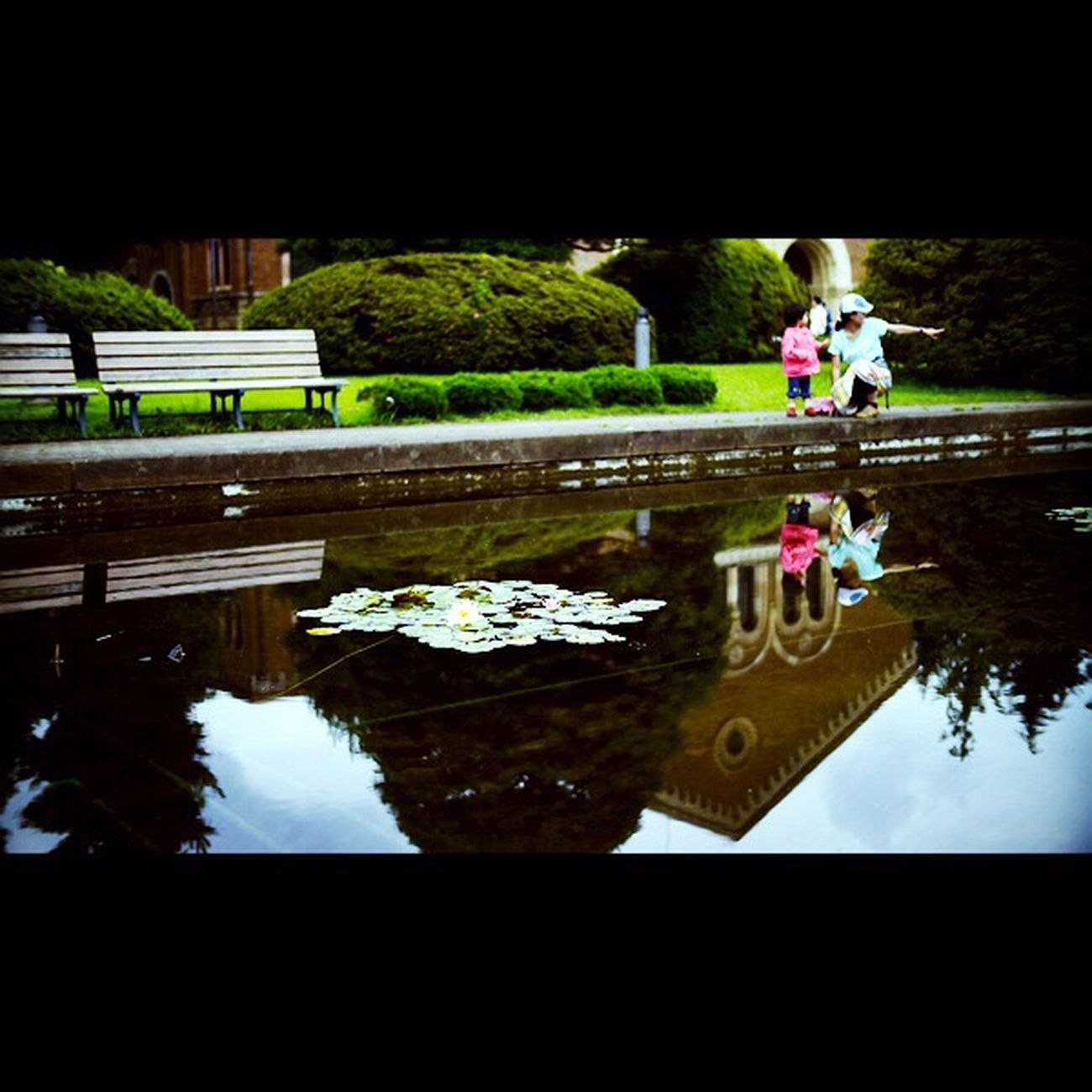 2012 Summer 一橋大学 反射 水面 Water Reflections Nokton25mmF0.95
