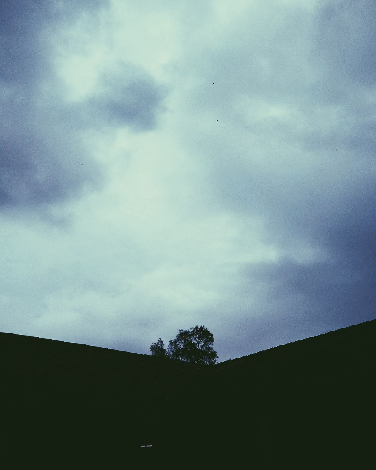 Vscocam Clouds And Sky Silhouette Tree