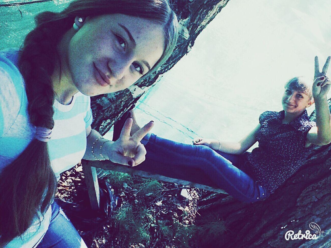 Sevenglade Friend ♡