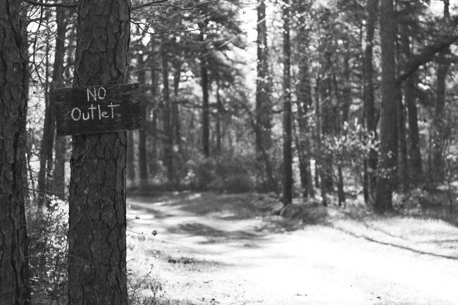 No Outlet Black And White Bnw Black & White Bnwphotography Pinebarrens Pinelands Pine Barrens