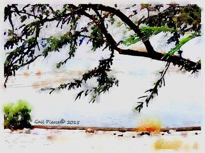 Salton Sea, Yacht club, Salton Sea, Digital Expression Waterlogue, Faux Watercolor, Digital Expression Desert