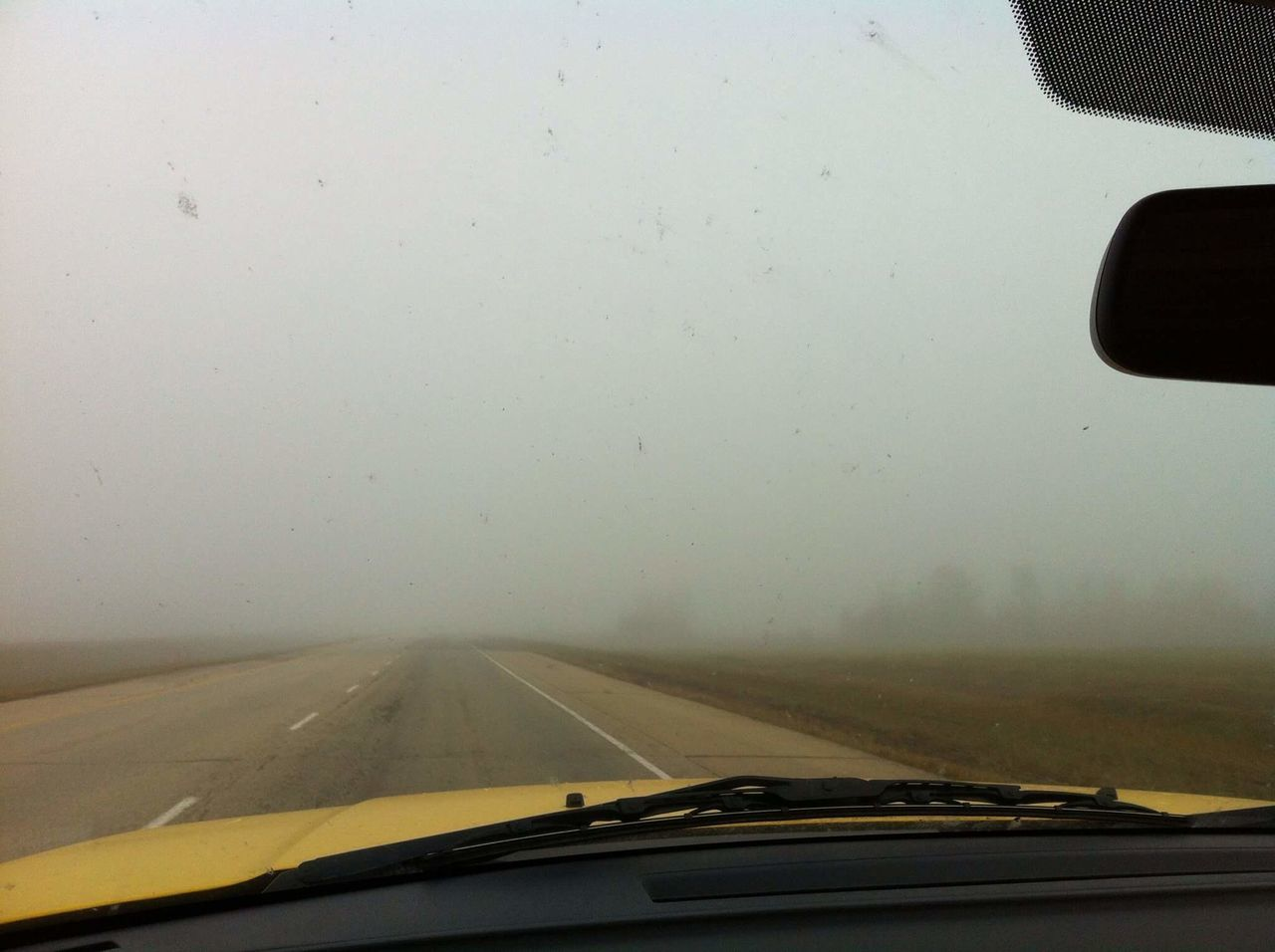 Driving through foggy, stormy Alberta! Driving Foggy Stormy Alberta Road Travel Traveling Journey Trees Vision Visibility