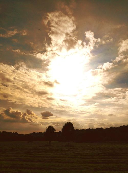 Nature Reserve Langenfeld Rheinland Landscape Field Nature Tranquil Scene Sky Sun Silhouette Beauty In Nature Cloud Outdoors Dramatic Sky Landscapes Impression Cloudscape Autumn Landscape_photography Fields And Sky Fields Nature Still Life Naturelovers Nature Photography